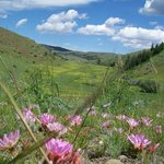 Big Sheep Valley