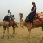 camel gals