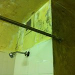 Leaking and Muddy walls