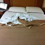Torn Bedsheets and Blankets
