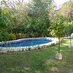 Pool und Teilansicht Garten Nebengebäude