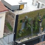 Watching from my room - the 'gardening' above Miran on Evripidou Street