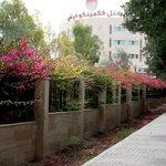 Фотография Фламинго Отель