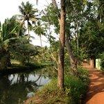peaceful walk just behind the villa