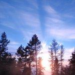 Poli Poli glorious sunset through the trees