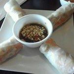spring rolls with tofu & peanut sauce