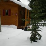 Cabin 5 in the snow