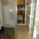 Deluxe room, view of shower area