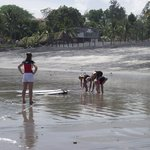 Swimmers and learning to surf