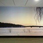 Wallpaper in hallway