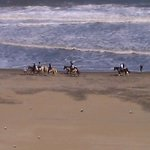 You Can Rent Horses To Ride Down The Beach