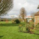 il giardino dove Madame coltiva fiori e frutta per le confetture