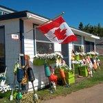 Petunias, buoys & flags welcome you to the wharf.