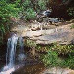 Quaint Little Waterfall in Back