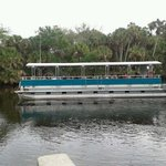 Boat tour at Snook Haven