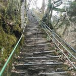 Jacobs Ladder 100 steps to decend