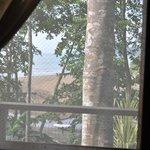 Vue de la fenêtre à travers la moustiquaire