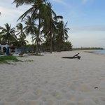 plage avec bains de soleil et matelas et serviettes