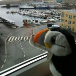View from our room (and our puffin travel mate!)