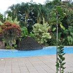 La piscine entourée d'une magnifique végétation.