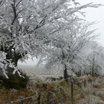 A frosty freezing day on the moors