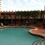 alexander pool