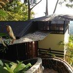 Treehaus villa