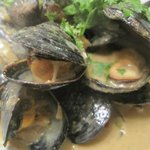 Mussels in a Red Curry Coconut Broth