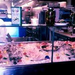 Raw Bar Display