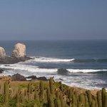 punta de Lobos, minutes from casa verde