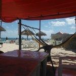 Relax at Rastas in a hammock