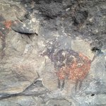 A photo from the Cave Painting tour we went on...