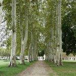 Abbaye de Sorèze