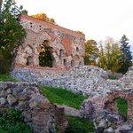 Ruins of the Viljandi Order Castle
