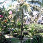 giardino reception
