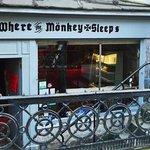 Foto de Where The Monkey Sleeps