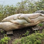 Sooke Harbor House Garden seals