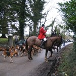 horses and hounds of duhallow hunt meeting right here!!