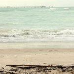 Le spiagge bianche di Rosignano Solvay