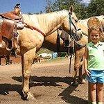 Cowpoke Horse & Pony rental at Glacier Lodge