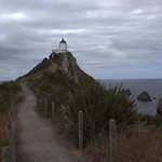 Nugget point, photographers and nature lovers paradise