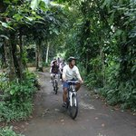 Bali Countryside Bike Tour