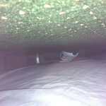 The shoe under the bed
