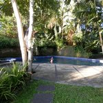 Jasmine Suite gardens and pool