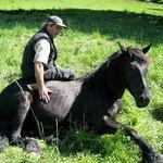 Jean-Louis med en av sina merénshästar