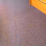 Revolting state of stained and smelly carpet