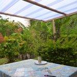 La tettoia nuova sul giardino