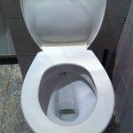toilette ayant déja servie