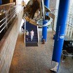 The Charleston Museum - Lobby