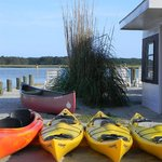 Kayaks and Canoes Rentals
